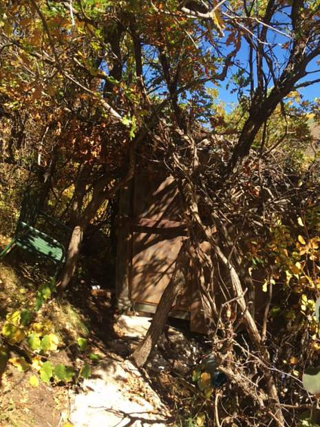 The front door of a shack built on Aspen Mountain near LIft 1A was well camouflaged in the thick brush.