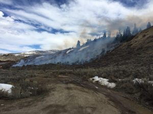 Wildland fire in Silverthorne, first of 2019 for Summit County