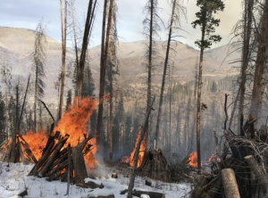 Controlled burn in West Vail this morning