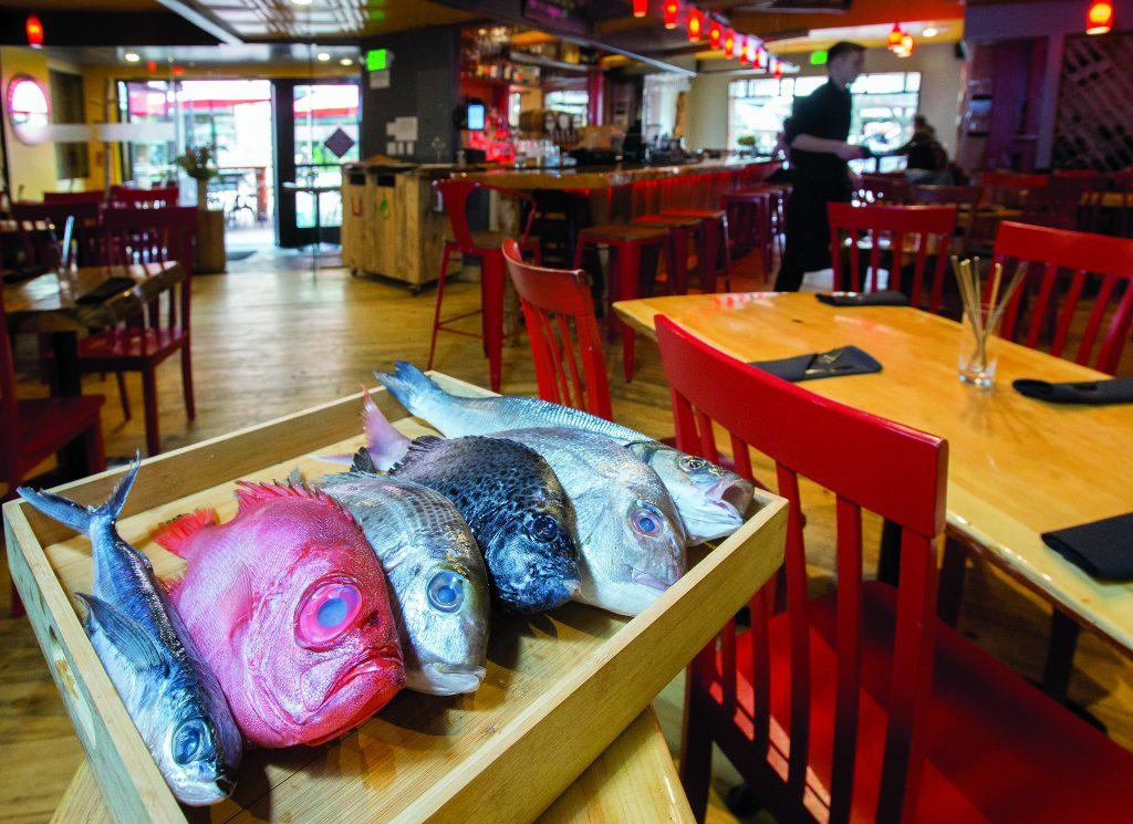 A selection of changing daily fresh fish availble at Hooked and served to order.
