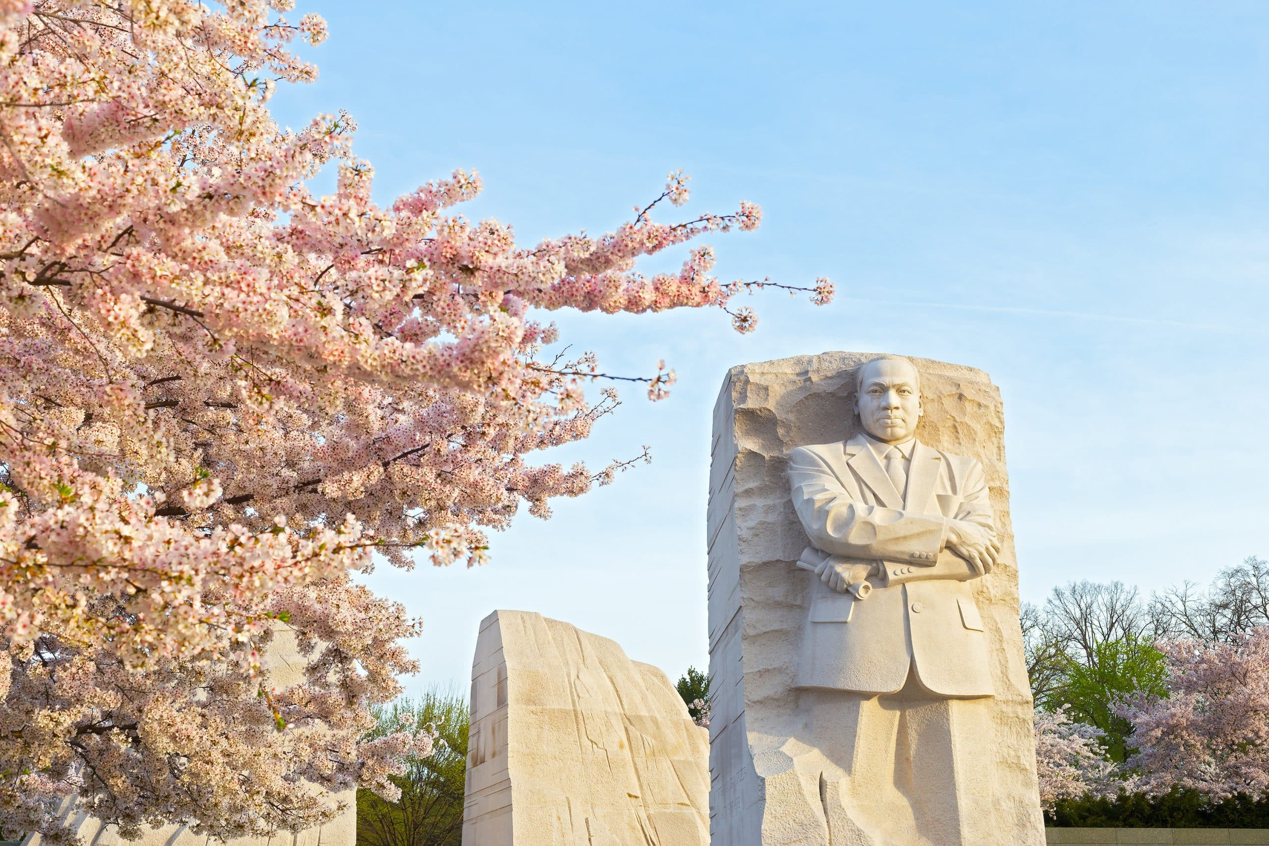 Curious Nature: The National Park Service and celebrating civil rights leader Martin Luther King